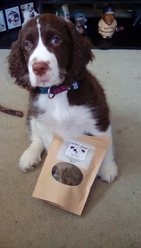 Cooper with his Happy Dogs CBD Treats pbjdogs.com
