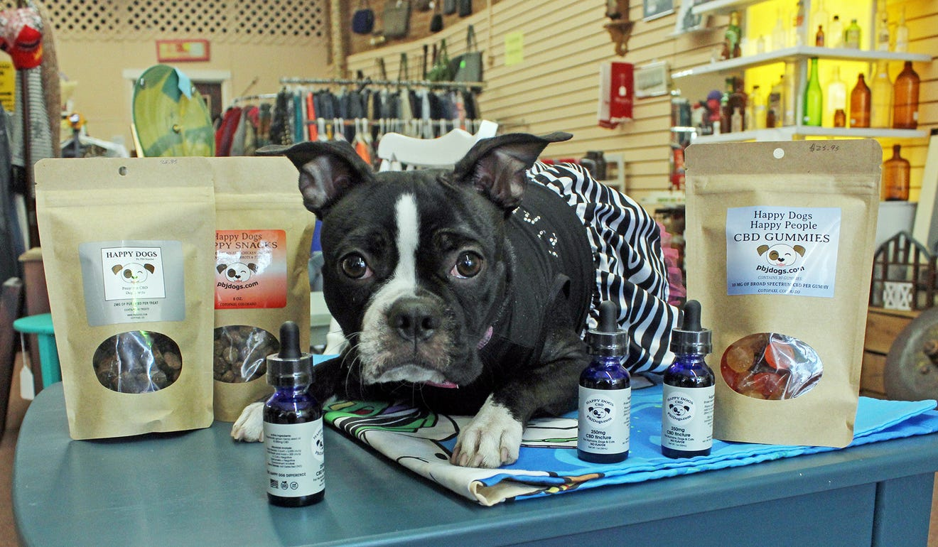 Molly sitting with Happy Dogs CBD products! pbjdogs.com